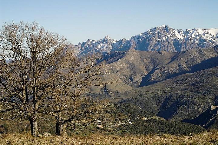 Monte Padro
